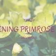 TOP 10 evening primrose oil reviews